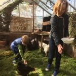 Guests feed the chickens